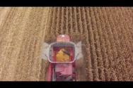 Truesight® 2 Row guidance for Corn